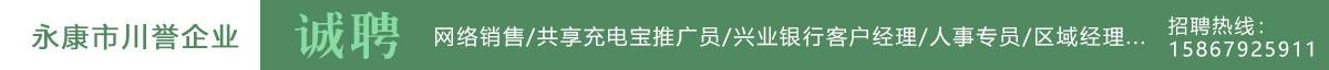 永康人才网--永康市川誉信息技术有限公司