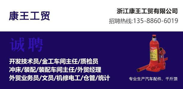 永康人才网--浙江康王工贸有限公司